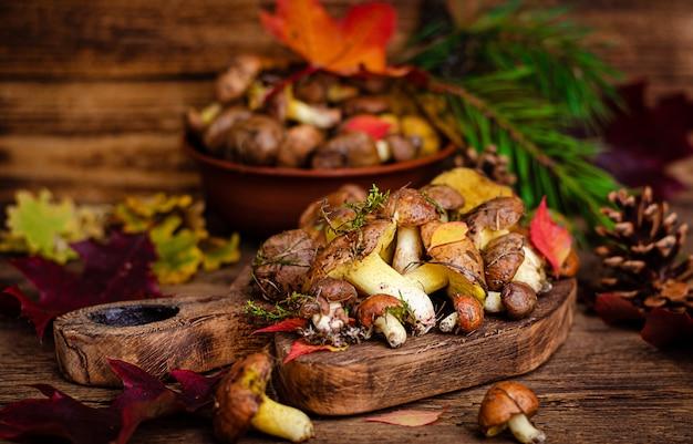 秋の食用キノコ。自然食品。素朴な木製の空間で新鮮な生の油性キノコ。セレクティブフォーカス。
