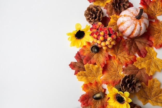 空白の画像の右半分にある秋の要素