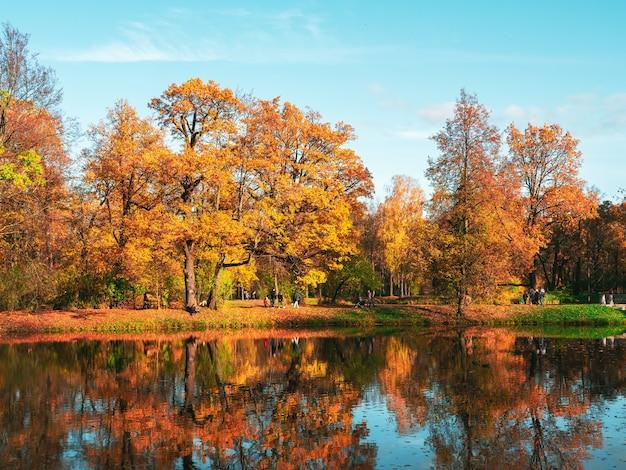 明るい金色の木々がある都市公園の湖沿いの秋の堤防