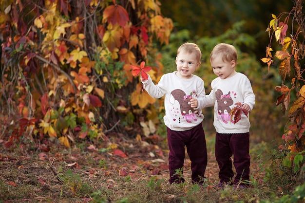 작은 쌍둥이 소녀의 가을 감성적인 초상화. 붉은 포도와 예쁜 소녀가 공원에 나뭇잎. 어린이를 위한 가을 활동. 가족을 위한 할로윈과 추수 감사절 시간.