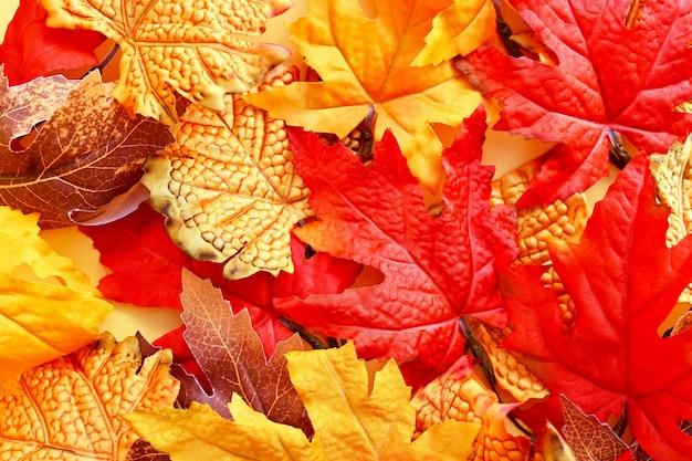 オレンジ色の葉の上面図と秋の抽象的な背景