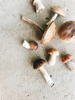 Autumn and fall composition. colorful orange mushrooms lying on grey cement floor