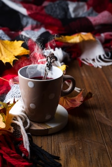 Autumn fall concept with knitted blanket and hot tea with berries, autumn leaf