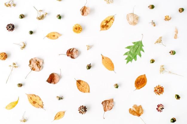 秋秋フラットレイ、トップビュークリエイティブアレンジ。