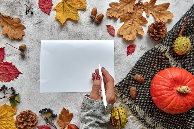 Autumn, fall or halloween composition made of dried leaves, pumpkin, pine cones, acorns, warm scarf and hand with cup of coffee on concrete background. template mockup blank notebook with copy space.