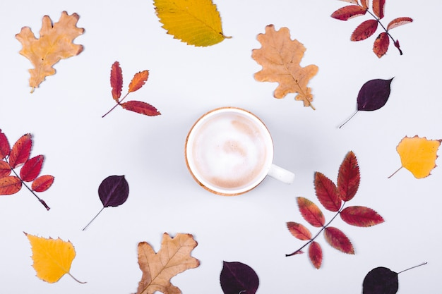 Autumn fall leaves and cup of coffee. hello autumn card concept.