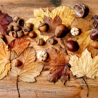 黄色のカエデの葉、ナナカマドの果実、栗、木製のテクスチャ背景に装飾的なカボチャと秋の秋の季節の構成。フラットレイ、正方形の画像