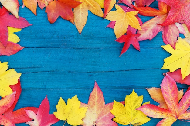 In autumn, the fallen dry leaves of yellow, red, orange color line the perimeter of the frame on an old wooden plank of pale blue color.