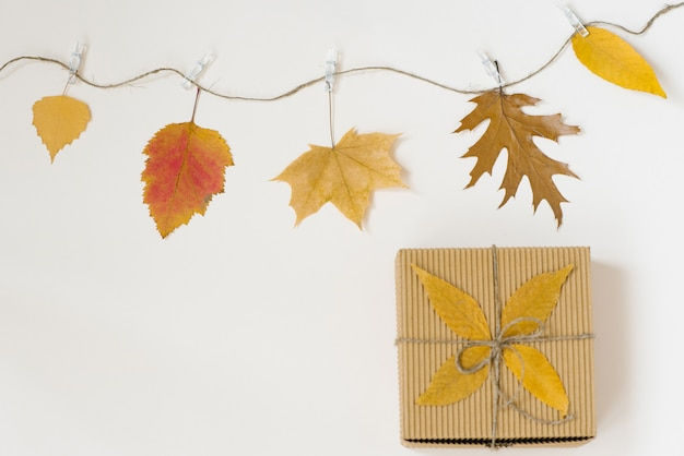 Autumn fallen leaves hang on a rope with clothespins on a light beige background and a gift craft box with a bow of twine.