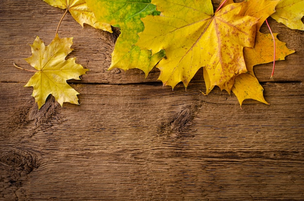 Autumn fallen leaves on rustic wooden background. top view, .