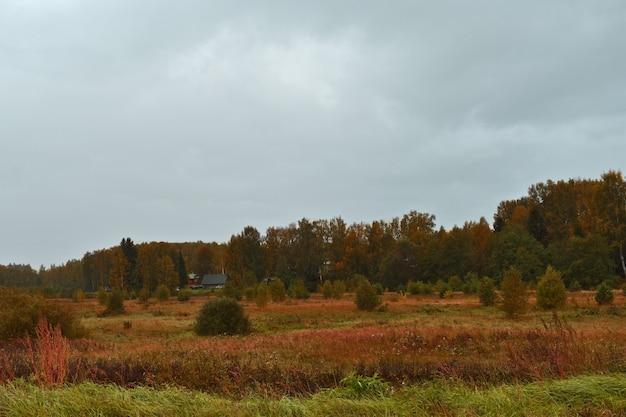 Осеннее поле, лес и хмурое небо