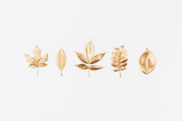 Autumn flat lay. autumn golden leaves on white