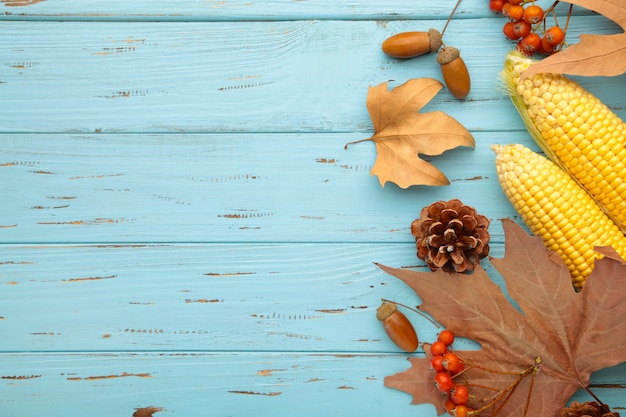 Autumn flat lay composition with copy space on blue background