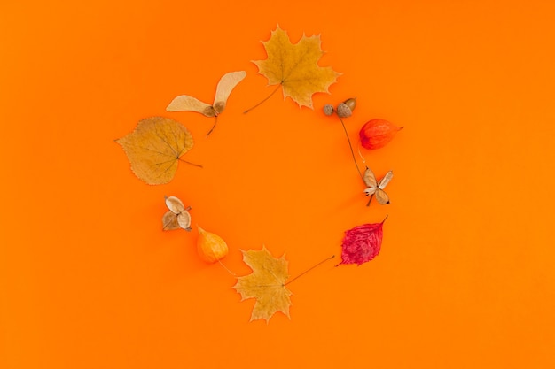 Autumn flat lay composition with dry leaves wreath frame on bold orange color background. creative autumn, thanksgiving, fall, halloween concept. top view, copy space