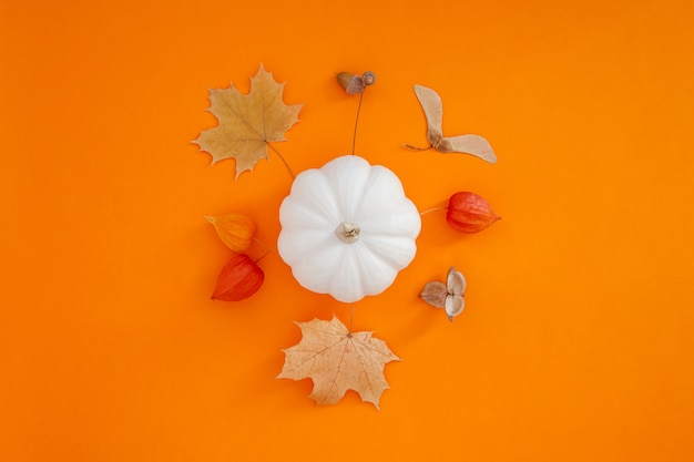 大胆なオレンジ色の背景に白いカボチャと乾燥した葉を持つ秋のフラットレイ構成。創造的な秋、感謝祭、秋、ハロウィーンのコンセプト。上面図、コピースペース