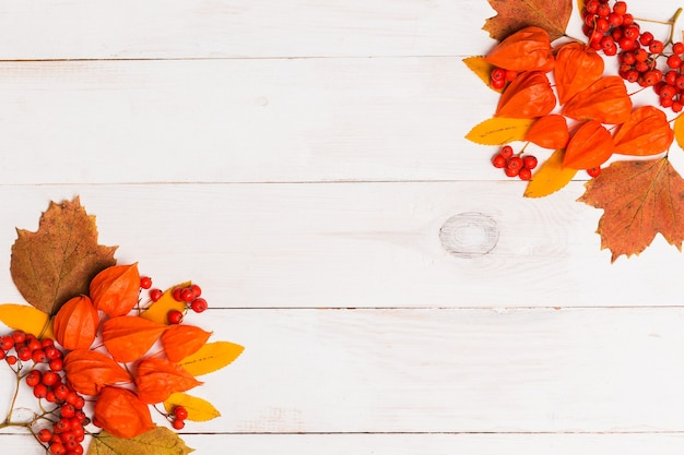 Autumn flat lay of orange winter cherry, leaves, rowan berries on white wooden background with copy space. flat lay, top view, copy space. autumn