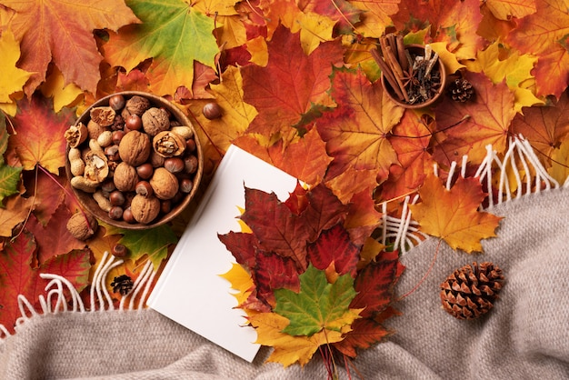 Autumn flat lay. white book, wooden bowl of nuts, coffee cup, cone, cinnamon over beige plaid and colorful leaves background.