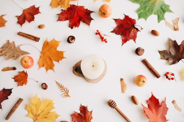 白い背景の上面図に葉リンゴと森林材料と秋のフラットレイ