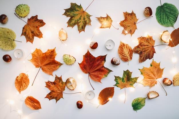 Осенняя квартира с листьями, свечами и каштанами, вид сверху Premium Фотографии