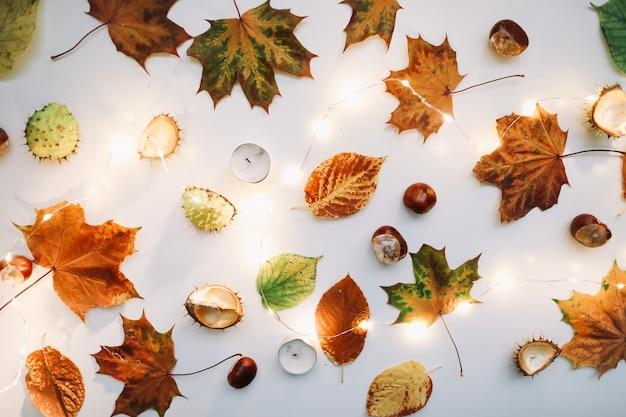 Осенняя квартира с листьями, свечами и каштанами, вид сверху
