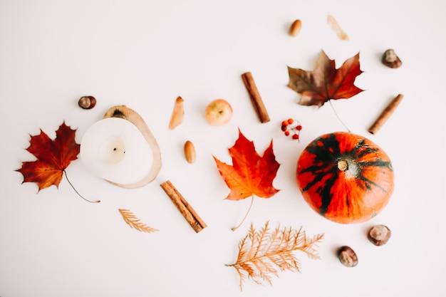 Осенний плоский с тыквенными листьями желудями на белом фоне с copyspace