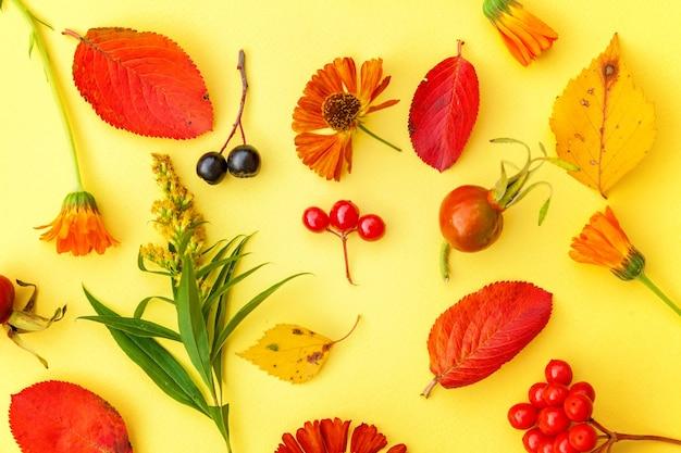 Осенняя цветочная композиция. растения калины, рябины, ягоды шиповника, свежие цветы, красочные листья, изолированные на желтом фоне. падение естественных растений экология обои концепции. плоская планировка, вид сверху