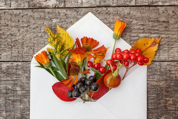Autumn floral composition plants viburnum rowan berries dogrose fresh flowers colorful leaves in mail envelope