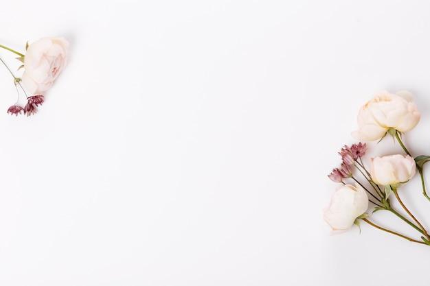 가 꽃 구성입니다. 분홍색 장미, 흰색 회색 배경에 수국 꽃으로 만든 프레임. 플랫 레이