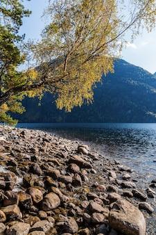 紅葉と山の湖の岩の多い海岸。ロシア、アルタイ、テレツコイ湖