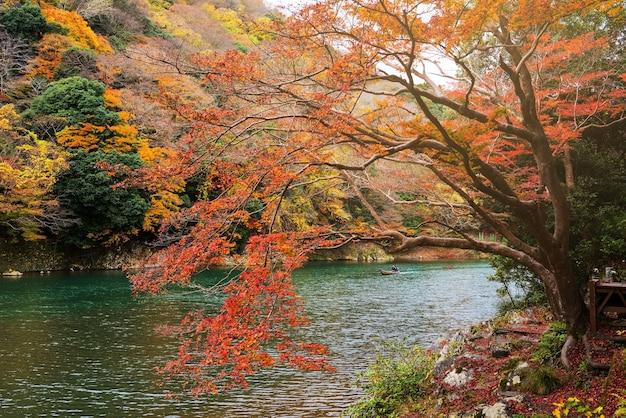 Autumn foliage colors near arashiyama lake, kyoto, japan