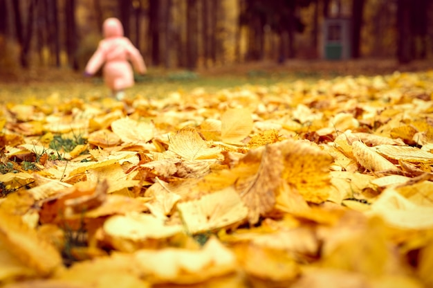 Осенняя листва вяза на земле крупным планом и на фоне размытой бегущей гуляющей девочки в осеннем парке