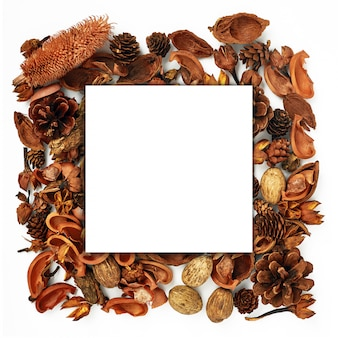 Autumn forest dried flowers and pine cones frame