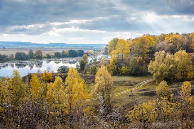 川の近くの秋の森、トップビュー Premium写真