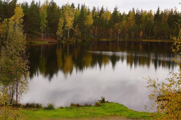 森の湖のほとりにある秋の森。