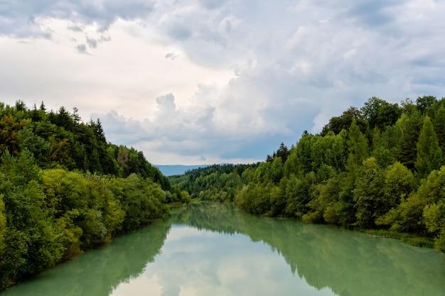 秋の森川の水のパノラマ。
