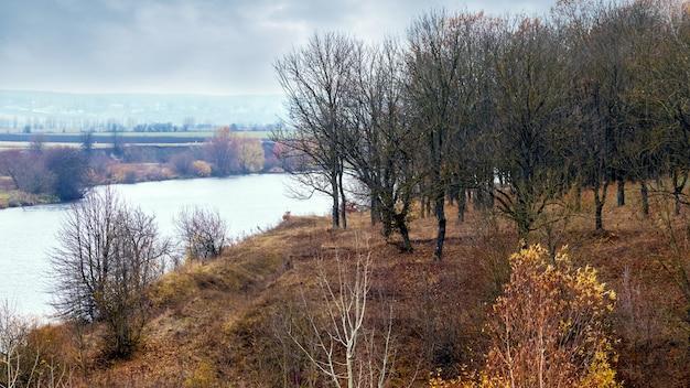 曇天の川沿いの裸木のある秋の森