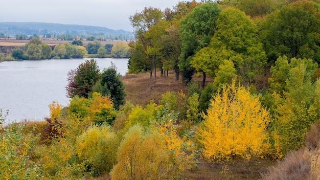 川沿いに色とりどりの木々が生い茂る秋の森。