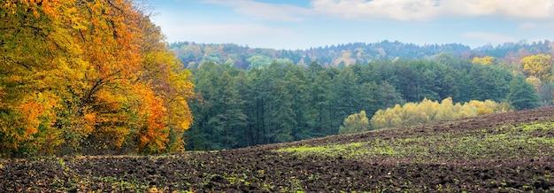 Осенний лес с разноцветными деревьями возле вспаханного поля