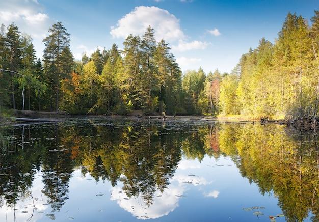 Осенний лес с отражением в озере