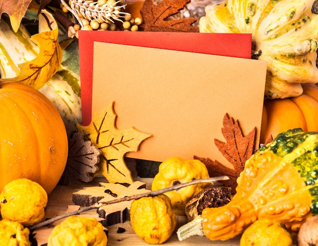 Autumn frame around greeting cards, text space