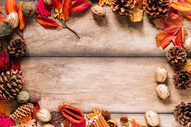 Autumn frame of leaves and cones