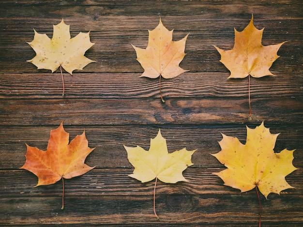 Autumn frame on wooden background. autumn composition.