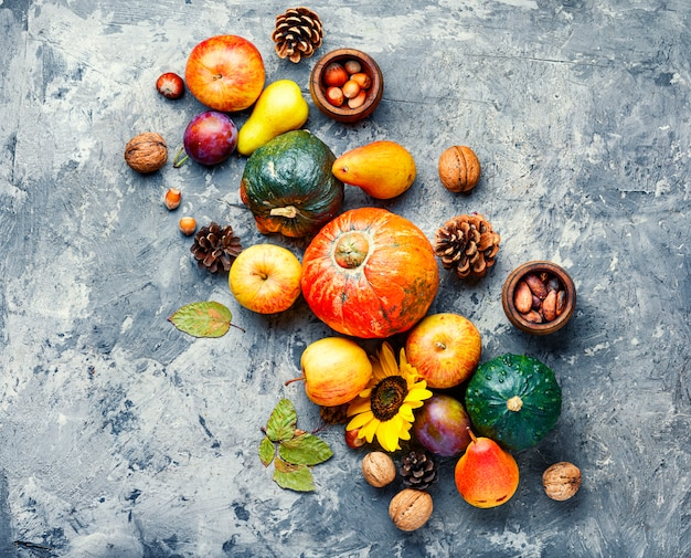 Autumn fruit still life