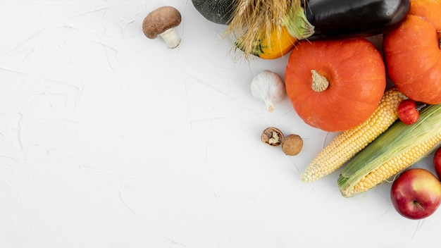Autumn fruits and vegetables with copy space
