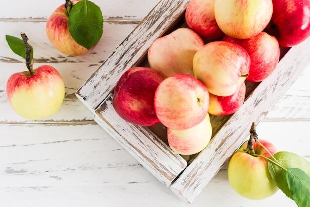 Осенние садовые яблоки в белом деревянном ящике на деревенском столе. концепция осени и урожая фруктов. вид сверху.