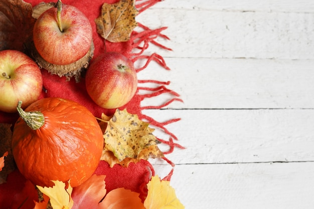 Autumn halloween composition with leaves, apples and pumpkin on white background, copy space