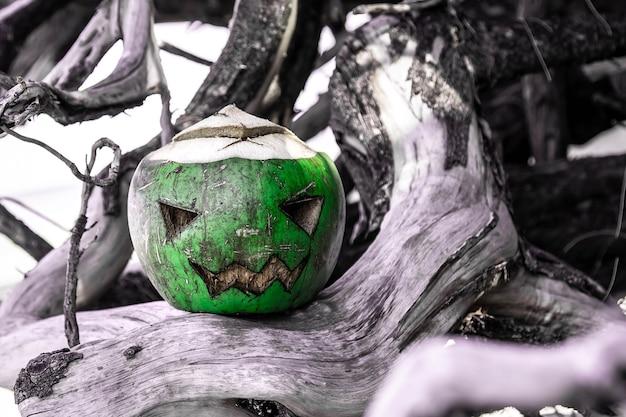 Осенний символ хэллоуина свежий зеленый кокос зловещее лицо, вырезанное в виде тыквы