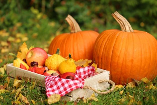 Autumn harvest autumn abundance