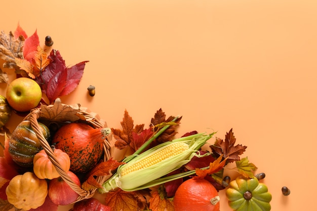 Autumn harvest in basket, pumpkins, apple, corncob, colorful leaves on orange background with space for text. thanksgiving day mock up. view from above.