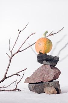Концепция осеннего урожая с деревянной ветвью, камнями и тыквой на белом фоне, глубокой тени.